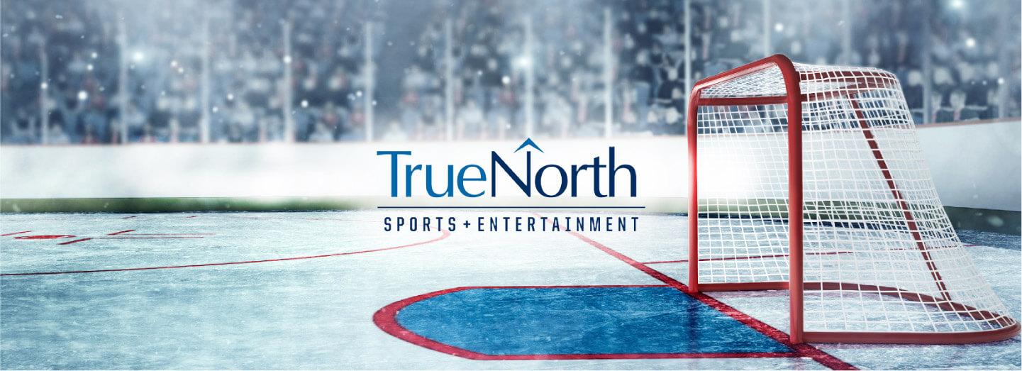 TNSE case-study-banner-hockey-net-in-arena