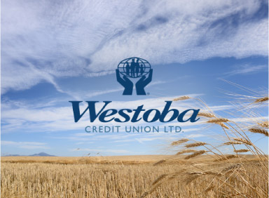 Category image of field for Westoba Credit Union case study