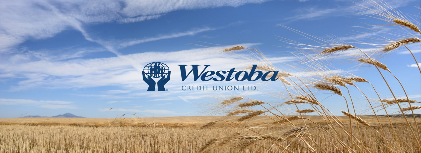 Header image of field for Westoba Credit Union case study