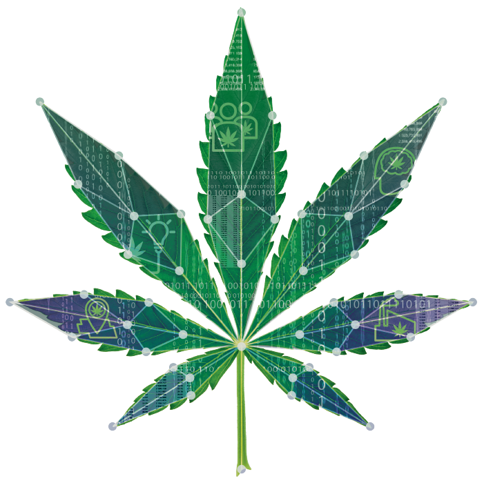 CannabisInsights-leaf