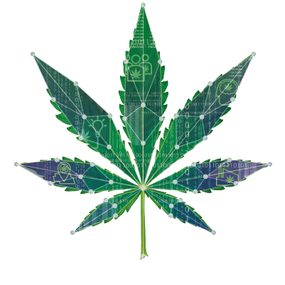 CannabisInsights Leaf2