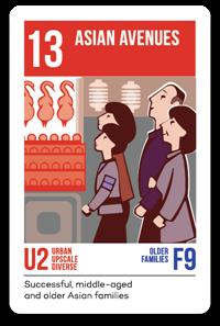 Consumer Segmentation PRIZM5 Segment 13