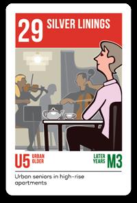 Consumer Segmentation PRIZM5 Segment 29